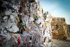 R's da sustentabilidade - to be green - aplicação